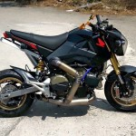 grom_with_Panigale_1199_engine