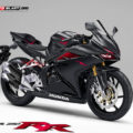 another-rendering--honda-cbr250rr_1