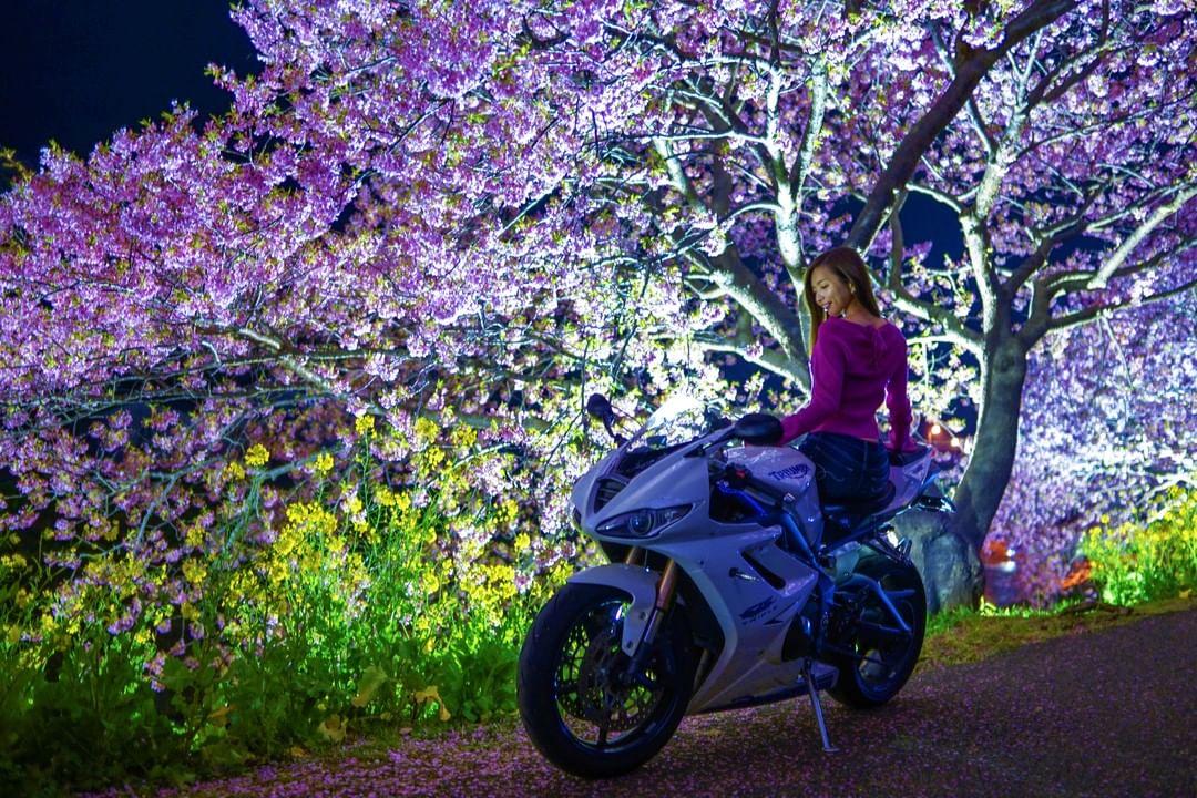 インスタ女子Ruriko 河津桜を探しに南伊豆へ! 